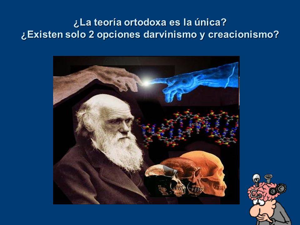 ¿La teoría ortodoxa es la única? ¿Existen solo 2 opciones darvinismo y creacionismo?