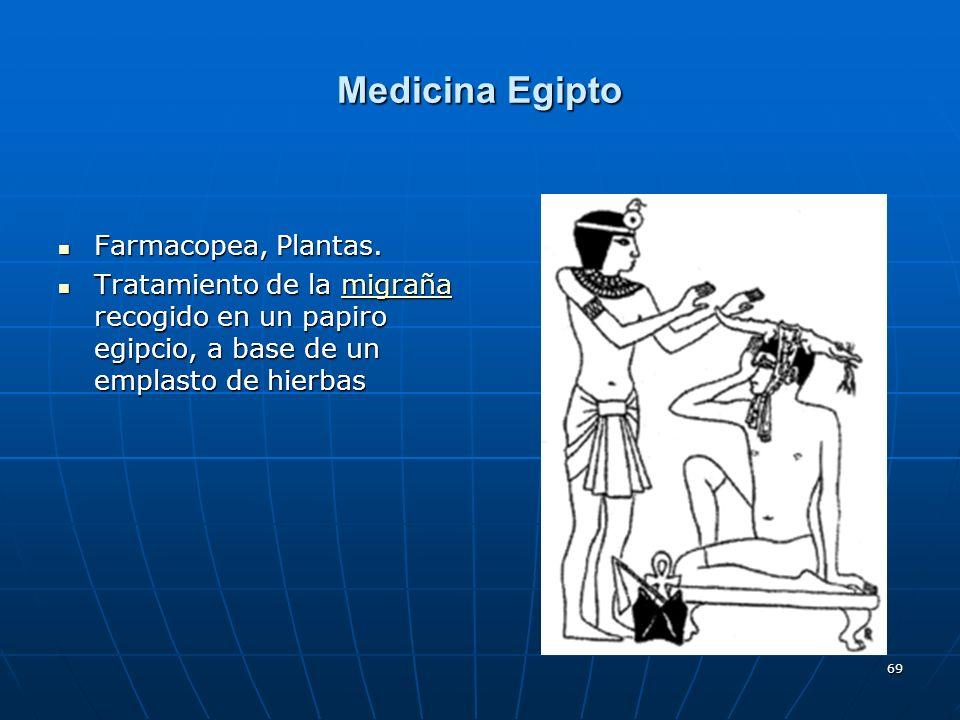 69 Medicina Egipto Farmacopea, Plantas. Farmacopea, Plantas. Tratamiento de la migraña recogido en un papiro egipcio, a base de un emplasto de hierbas