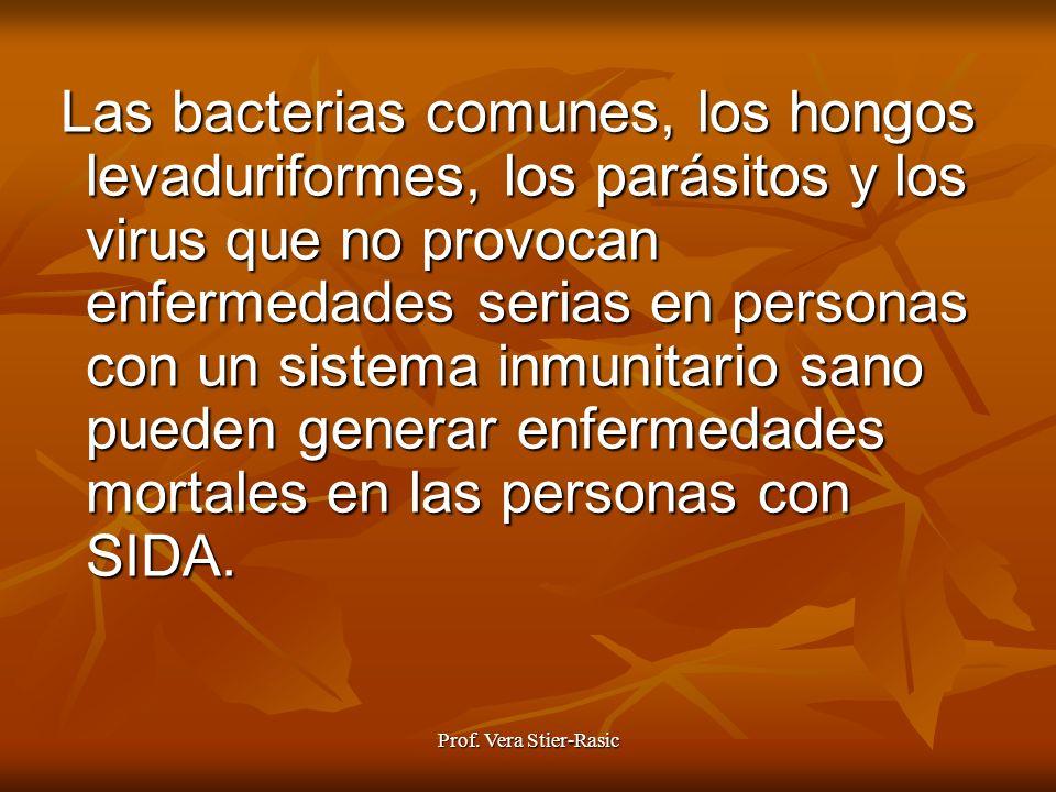 Prof. Vera Stier-Rasic Las bacterias comunes, los hongos levaduriformes, los parásitos y los virus que no provocan enfermedades serias en personas con