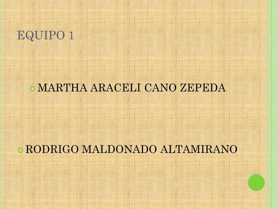 EQUIPO 1 MARTHA ARACELI CANO ZEPEDA RODRIGO MALDONADO ALTAMIRANO