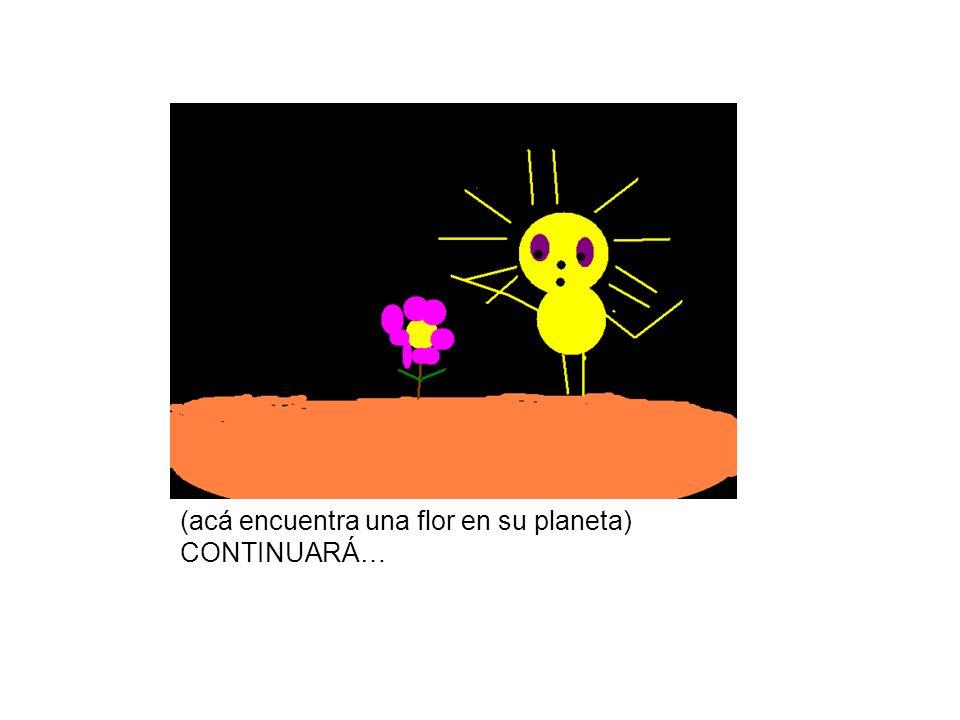 (acá encuentra una flor en su planeta) CONTINUARÁ…