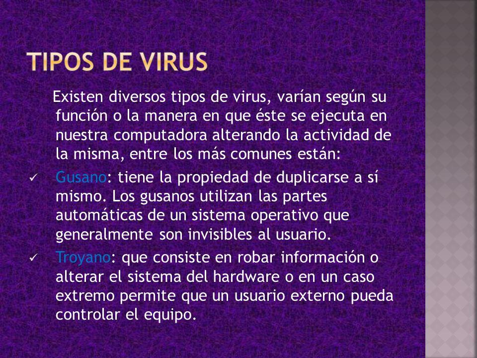Existen diversos tipos de virus, varían según su función o la manera en que éste se ejecuta en nuestra computadora alterando la actividad de la misma,