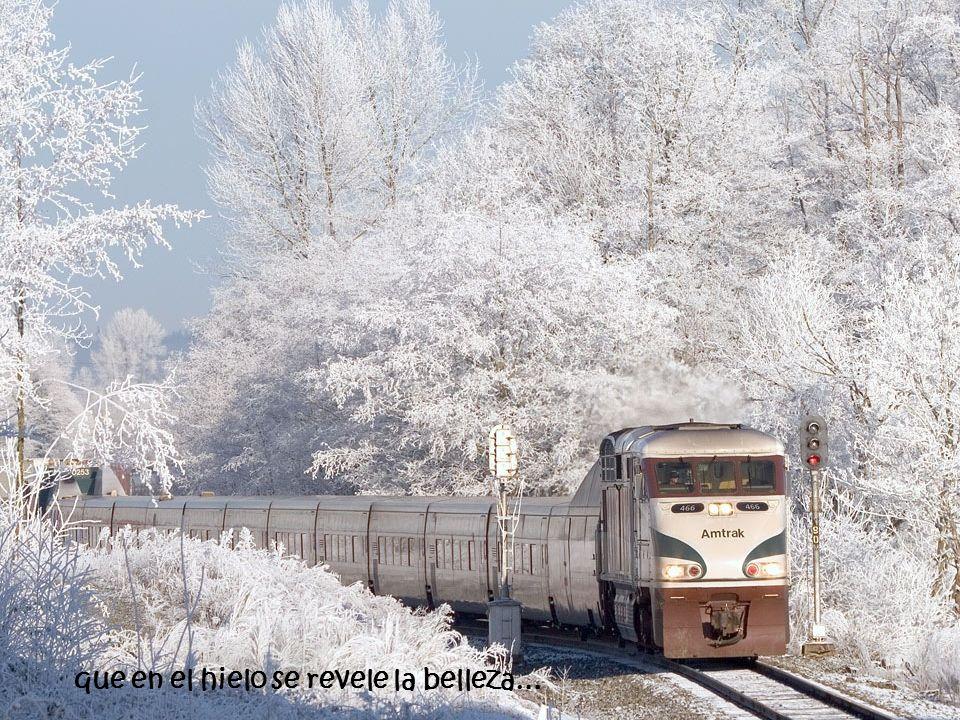 que en el hielo se revele la belleza…