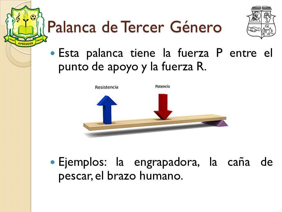 Palanca de Tercer Género Esta palanca tiene la fuerza P entre el punto de apoyo y la fuerza R. Ejemplos: la engrapadora, la caña de pescar, el brazo h