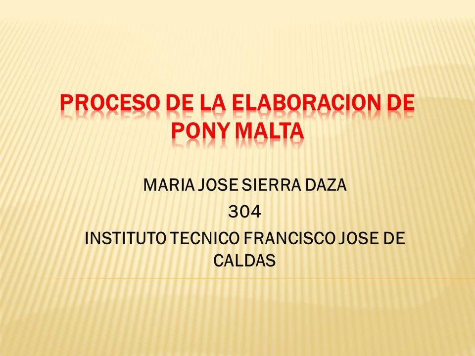 MARIA JOSE SIERRA DAZA 304 INSTITUTO TECNICO FRANCISCO JOSE DE CALDAS