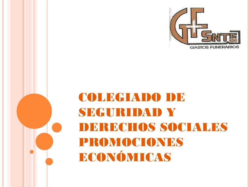 COLEGIADO DE SEGURIDAD Y DERECHOS SOCIALES PROMOCIONES ECONÓMICAS