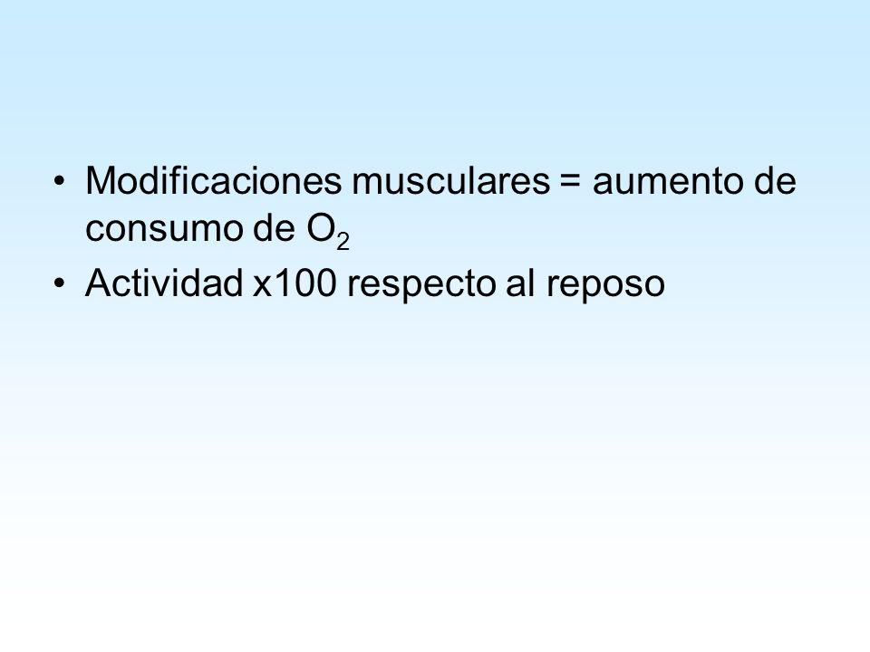 Modificaciones musculares = aumento de consumo de O 2 Actividad x100 respecto al reposo