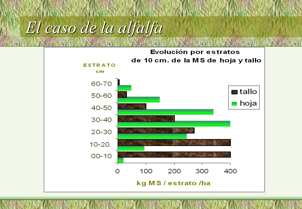 El caso de la alfalfa