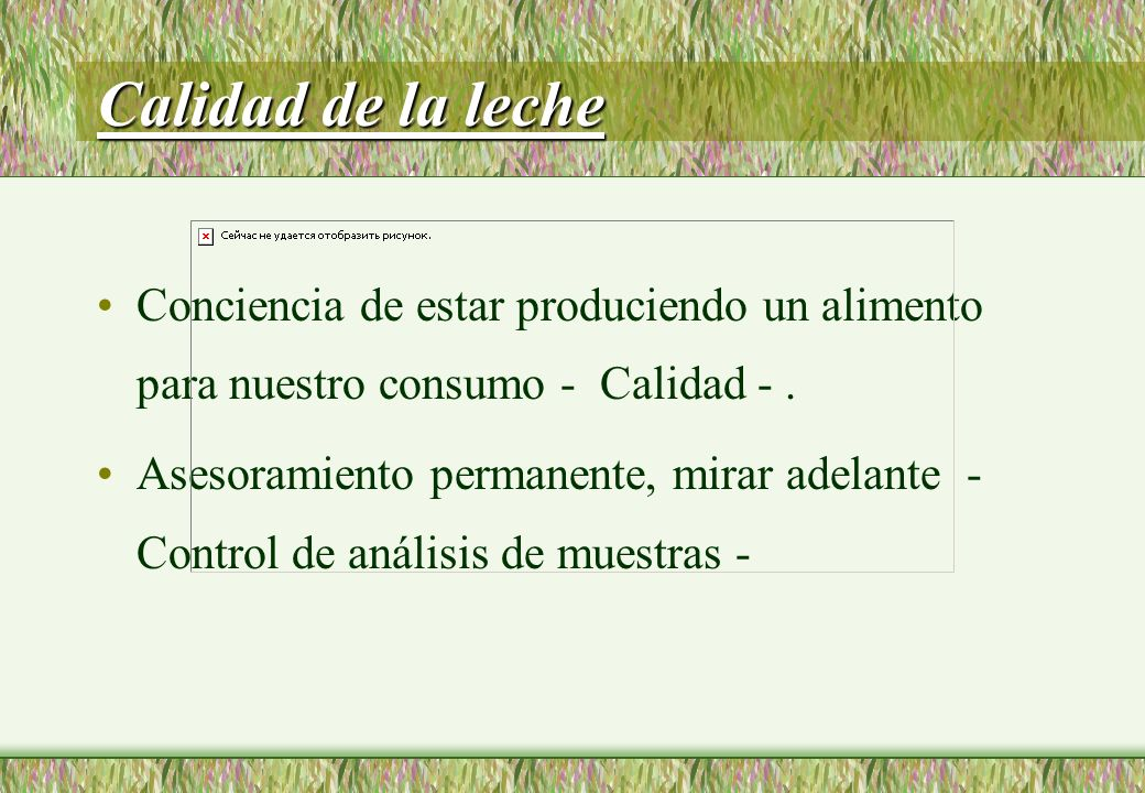 Calidad de la leche Conciencia de estar produciendo un alimento para nuestro consumo - Calidad -.