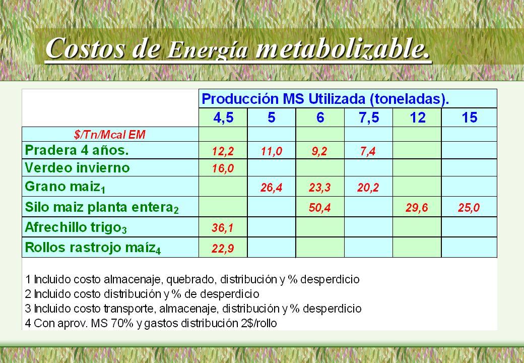 Costos de Energía metabolizable.