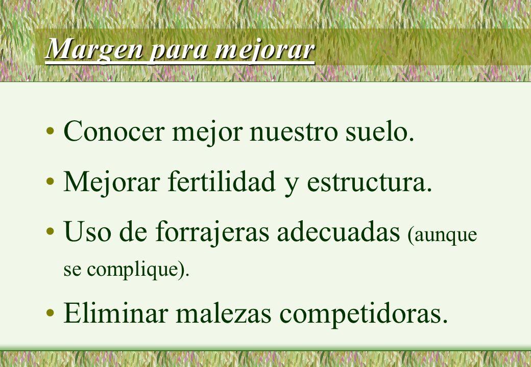 Margen para mejorar Conocer mejor nuestro suelo. Mejorar fertilidad y estructura.