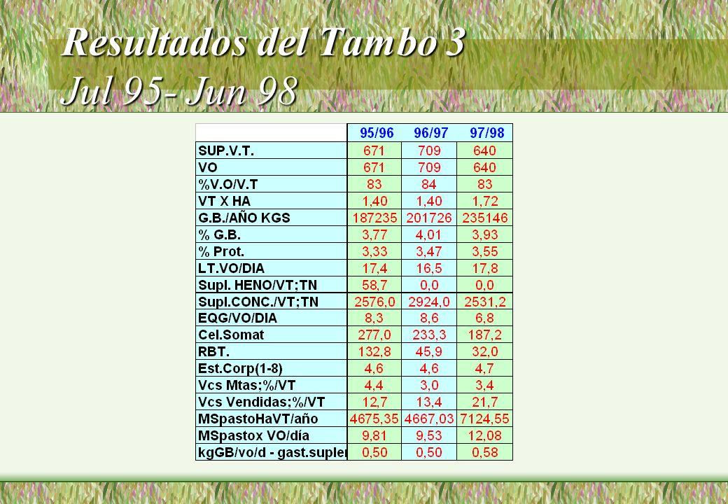 Resultados del Tambo 3 Jul 95- Jun 98