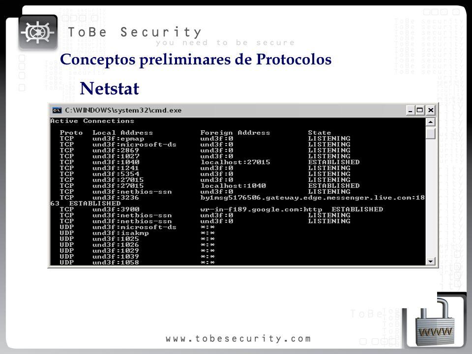 Netstat Conceptos preliminares de Protocolos