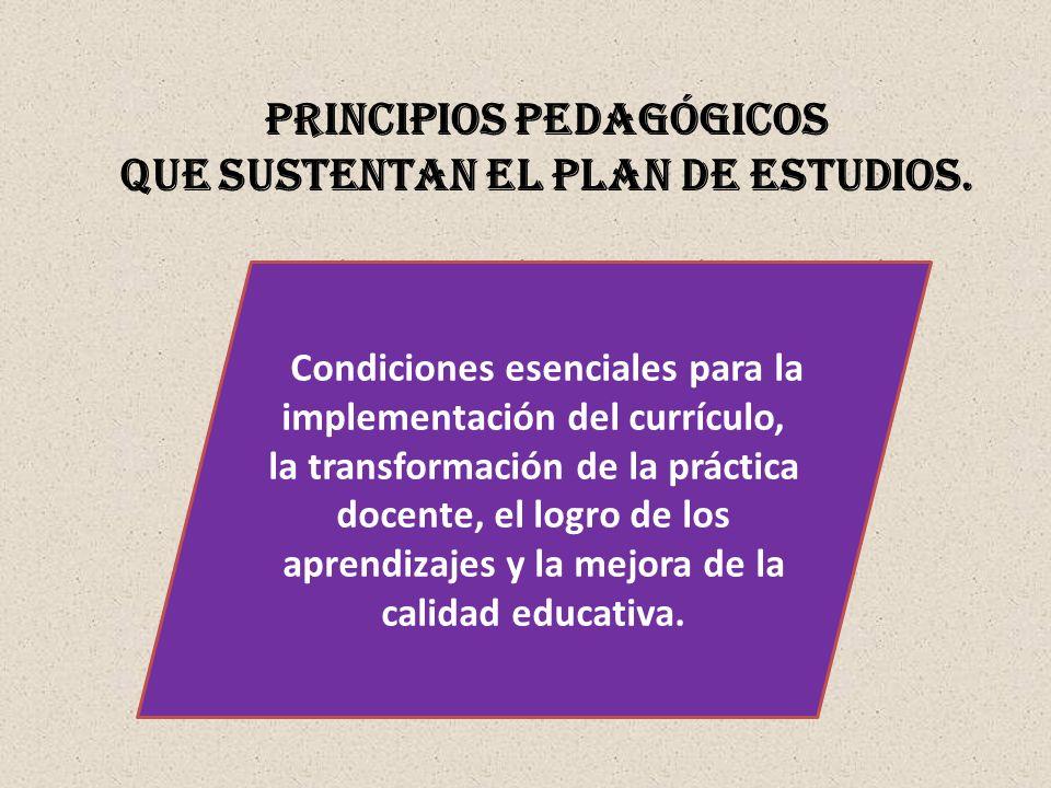 PRINCIPIOS PEDAGÓGICOS QUE SUSTENTAN EL PLAN DE ESTUDIOS. Condiciones esenciales para la implementación del currículo, la transformación de la práctic