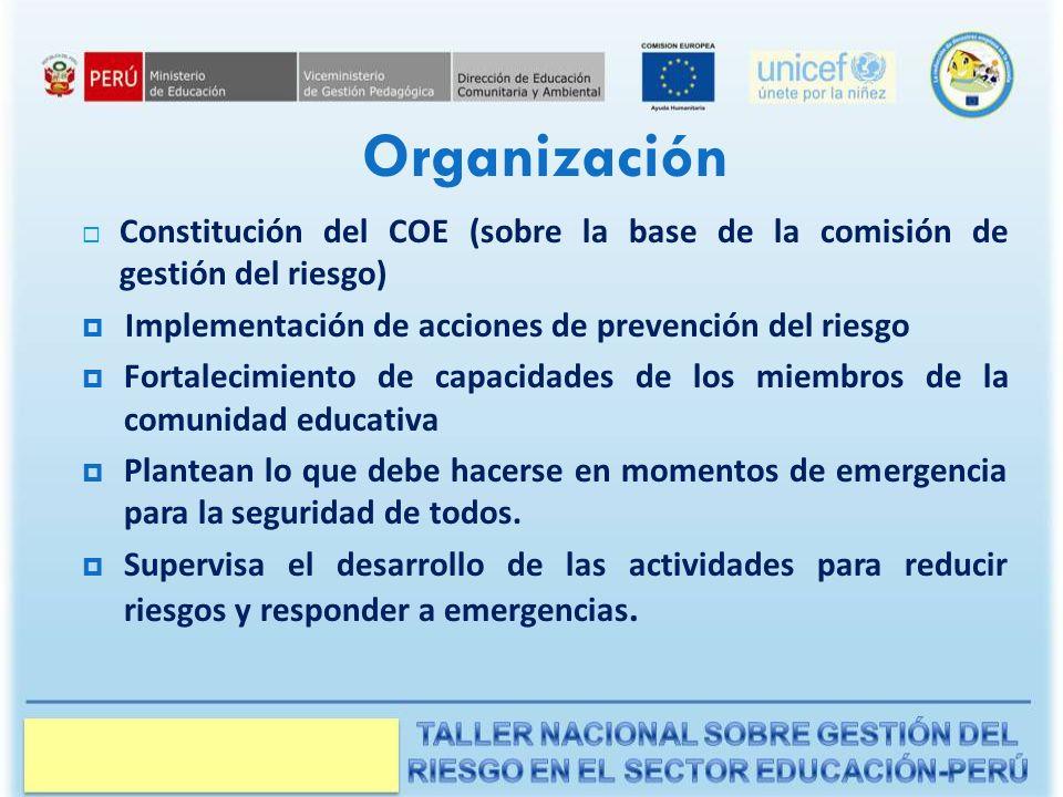 Organización Constitución del COE (sobre la base de la comisión de gestión del riesgo) Implementación de acciones de prevención del riesgo Fortalecimiento de capacidades de los miembros de la comunidad educativa Plantean lo que debe hacerse en momentos de emergencia para la seguridad de todos.