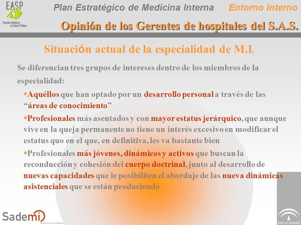 Plan Estratégico de Medicina Interna Situaci ó n actual de la especialidad de M.I. Se diferencian tres grupos de intereses dentro de los miembros de l
