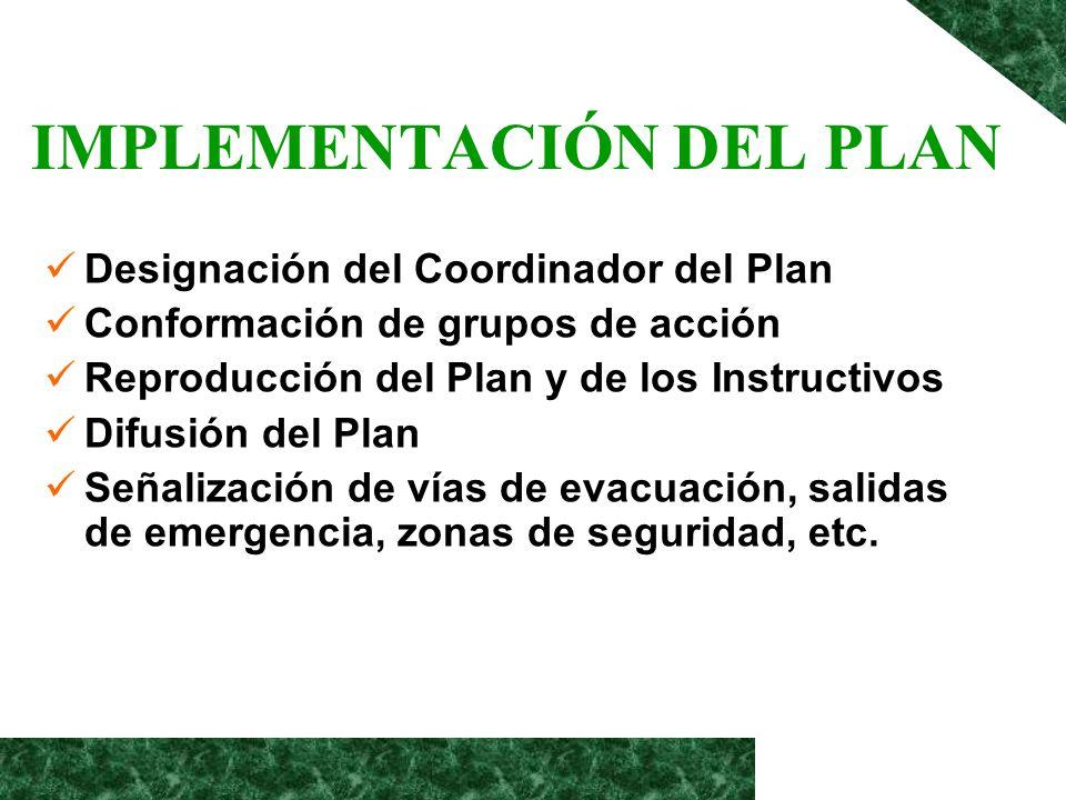 IMPLEMENTACIÓN DEL PLAN Designación del Coordinador del Plan Conformación de grupos de acción Reproducción del Plan y de los Instructivos Difusión del