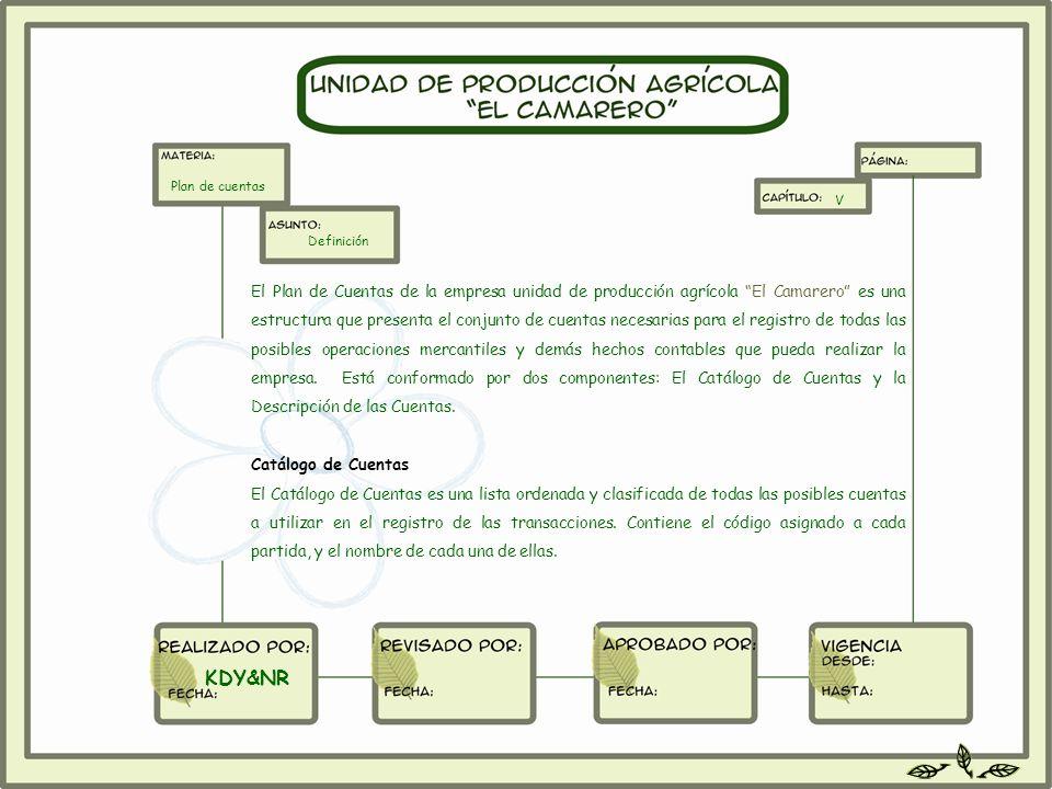 El Plan de Cuentas de la empresa unidad de producción agrícola El Camarero es una estructura que presenta el conjunto de cuentas necesarias para el re