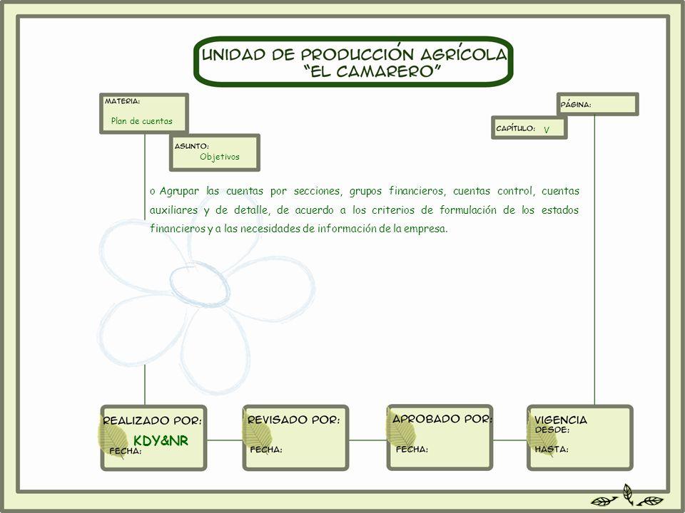 o Agrupar las cuentas por secciones, grupos financieros, cuentas control, cuentas auxiliares y de detalle, de acuerdo a los criterios de formulación d