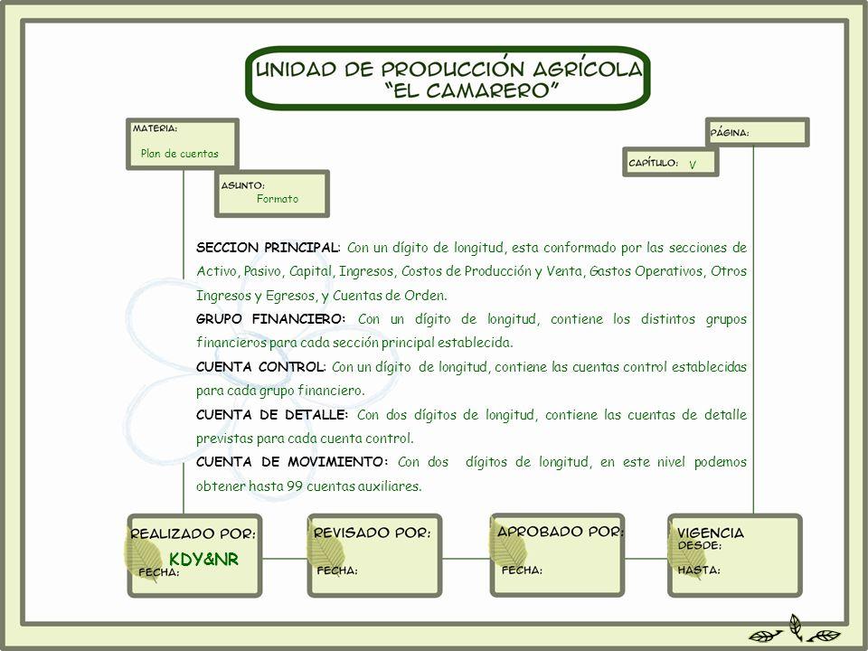 SECCION PRINCIPAL: Con un dígito de longitud, esta conformado por las secciones de Activo, Pasivo, Capital, Ingresos, Costos de Producción y Venta, Ga
