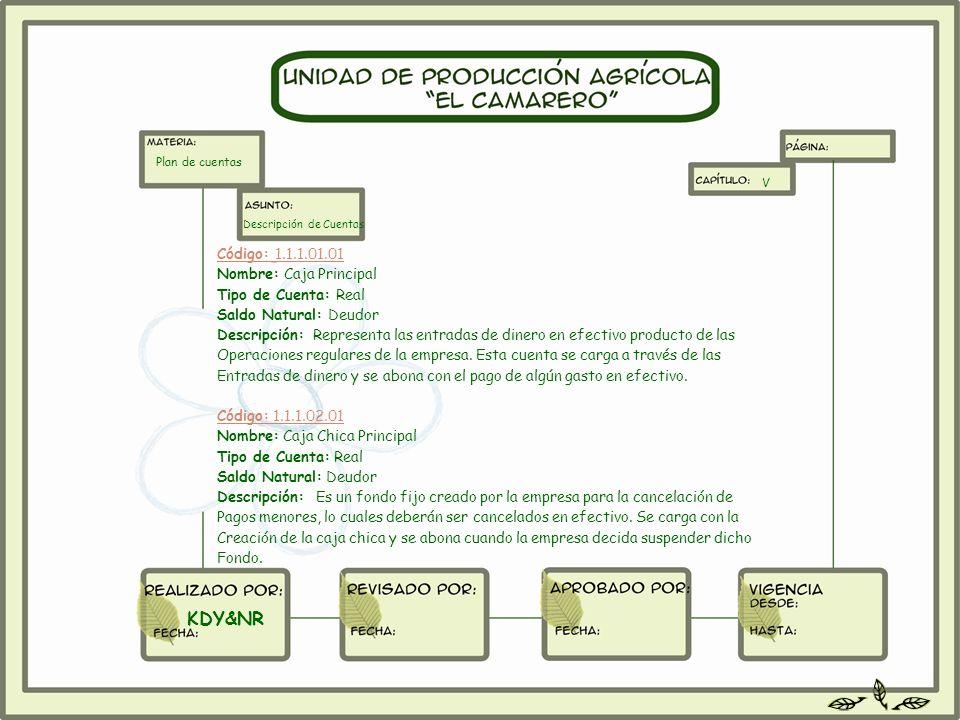 Código: 1.1.1.01.01 Nombre: Caja Principal Tipo de Cuenta: Real Saldo Natural: Deudor Descripción: Representa las entradas de dinero en efectivo produ