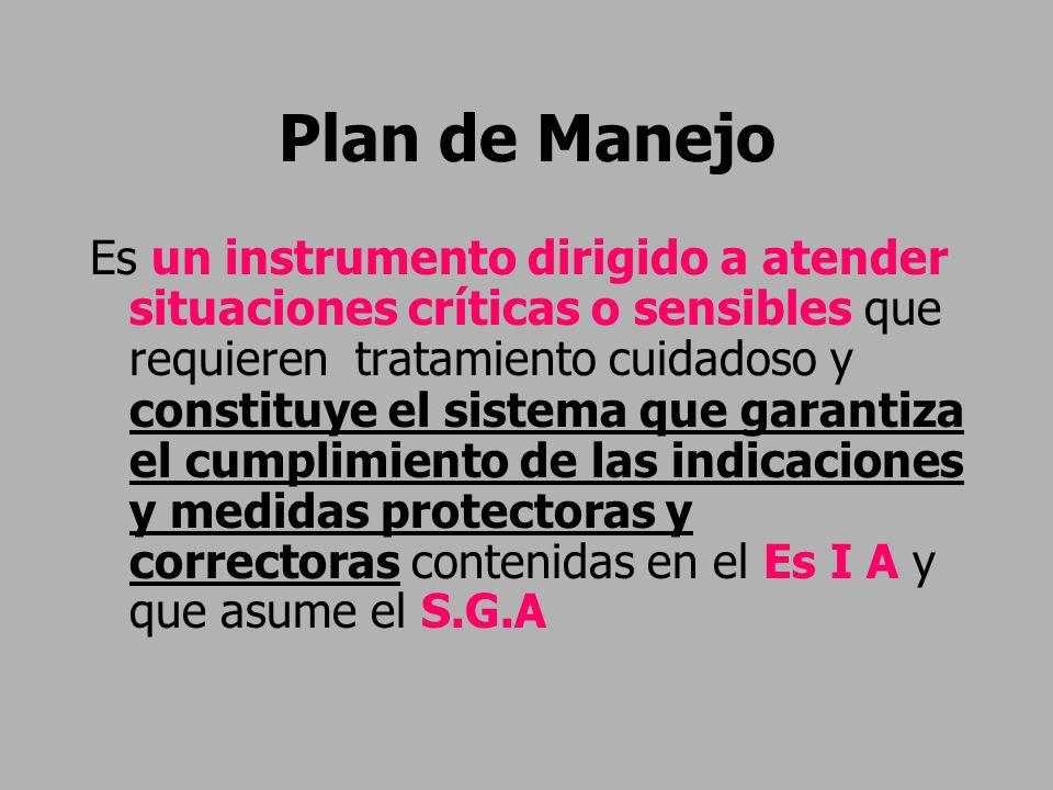 Plan de Manejo Es un instrumento dirigido a atender situaciones críticas o sensibles que requieren tratamiento cuidadoso y constituye el sistema que g
