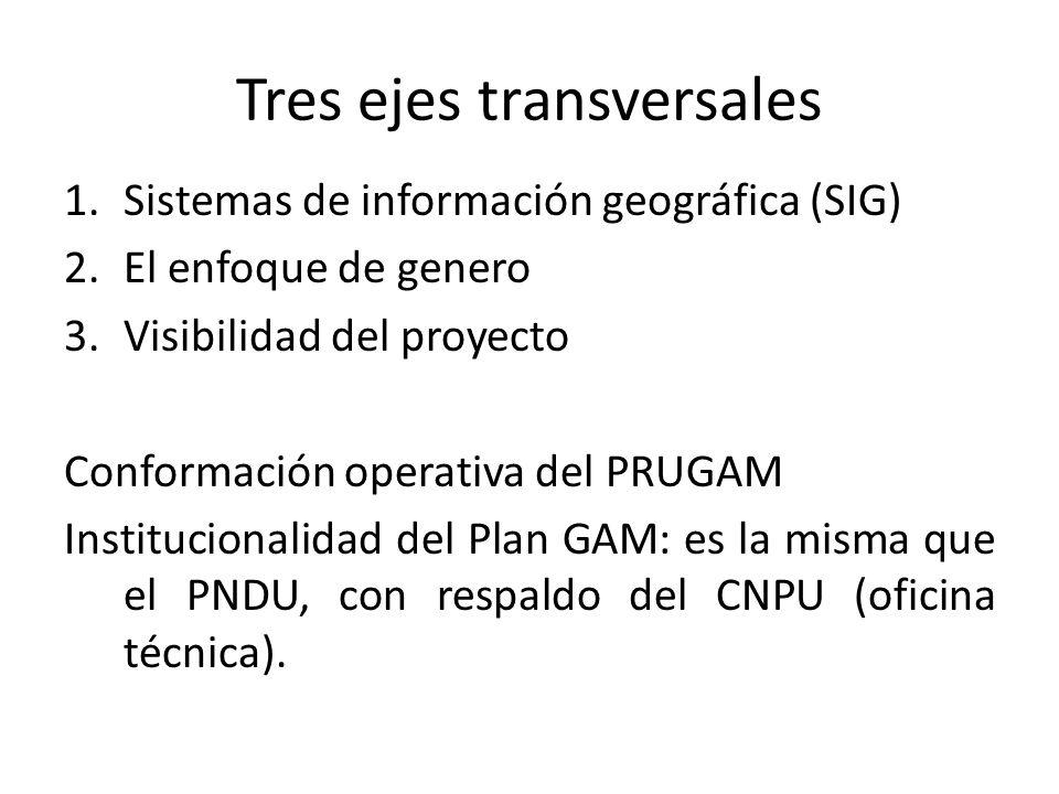 Tres ejes transversales 1.Sistemas de información geográfica (SIG) 2.El enfoque de genero 3.Visibilidad del proyecto Conformación operativa del PRUGAM Institucionalidad del Plan GAM: es la misma que el PNDU, con respaldo del CNPU (oficina técnica).
