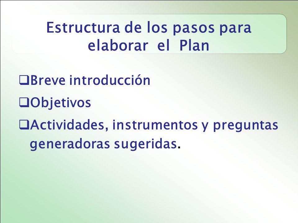 Estructura de los pasos para elaborar el Plan Breve introducción Objetivos Actividades, instrumentos y preguntas generadoras sugeridas.