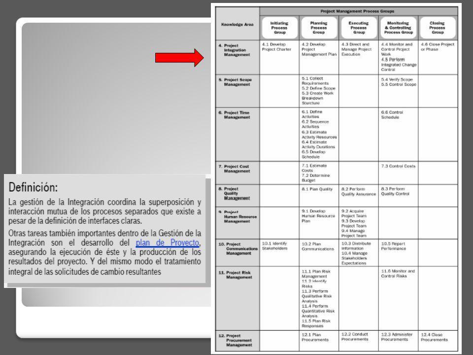 El plan del proyecto incluye: Documento de inicio del proyecto (Project Charter) Una descripción del enfoque o estrategia de la gerencia del proyecto (un resumen de los planes de gerencia individuales de las otras áreas del conocimiento).