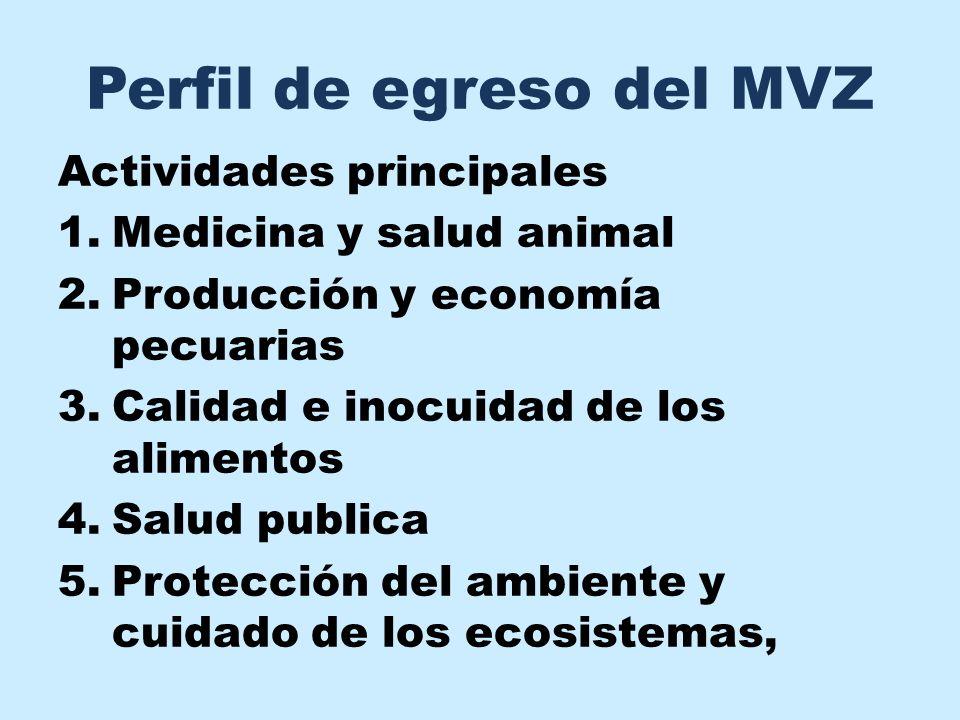 Perfil de egreso del MVZ Actividades principales 1.Medicina y salud animal 2.Producción y economía pecuarias 3.Calidad e inocuidad de los alimentos 4.