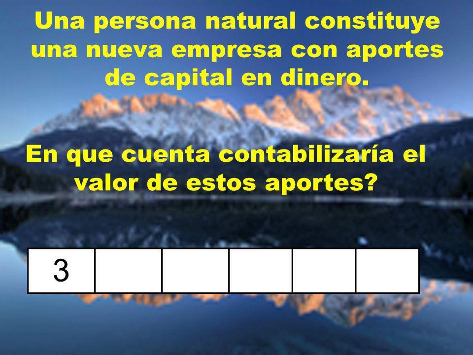 Una persona natural constituye una nueva empresa con aportes de capital en dinero.