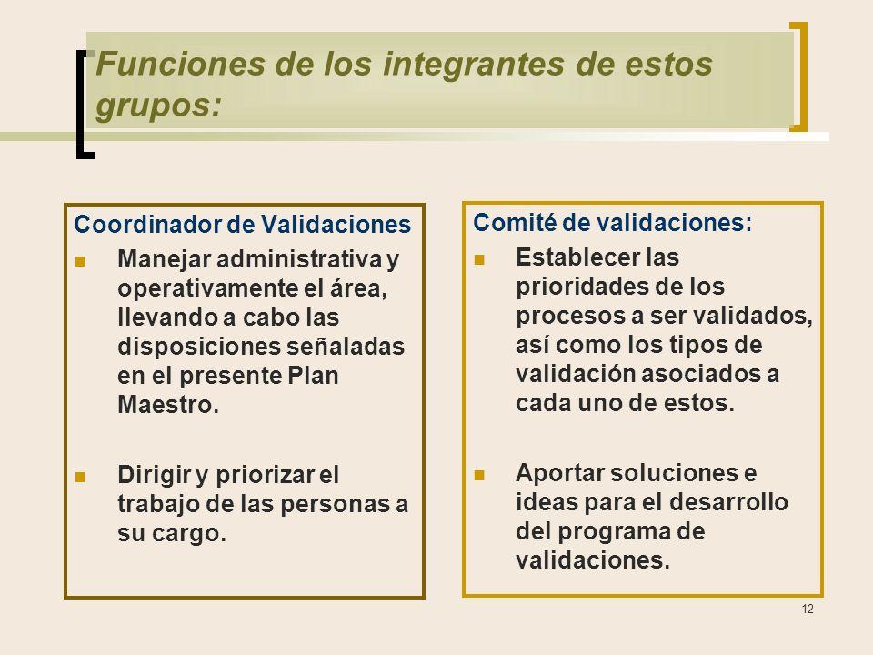 12 Funciones de los integrantes de estos grupos: Coordinador de Validaciones Manejar administrativa y operativamente el área, llevando a cabo las disposiciones señaladas en el presente Plan Maestro.