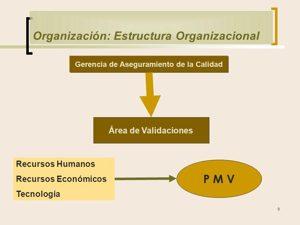 9 Organización: Estructura Organizacional Gerencia de Aseguramiento de la Calidad Área de Validaciones Recursos Humanos Recursos Económicos Tecnología P M V