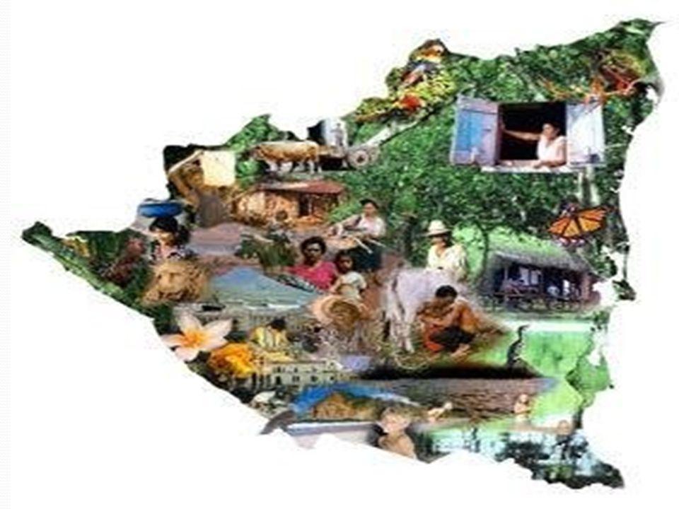 Programa 2: Actividades Sedes Locales Indicadores