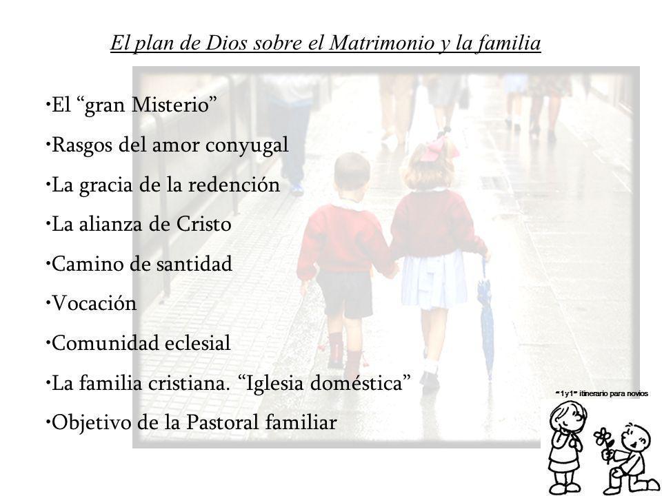 El plan de Dios sobre el Matrimonio y la familia 1y1 itinerario para novios El gran Misterio Rasgos del amor conyugal La gracia de la redención La ali