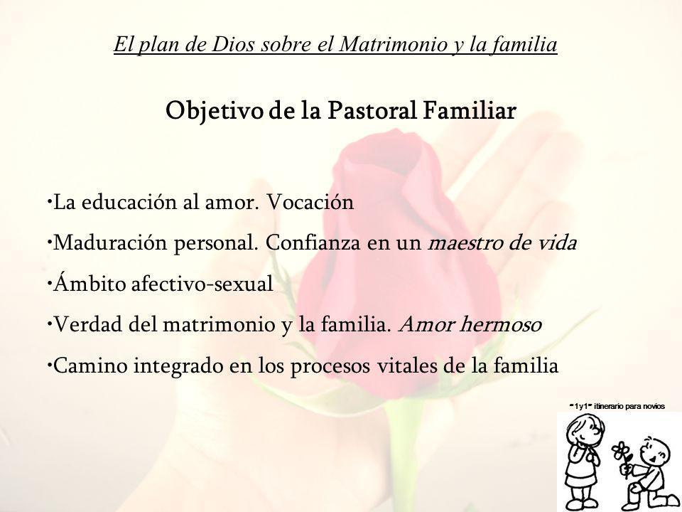 El plan de Dios sobre el Matrimonio y la familia 1y1 itinerario para novios Objetivo de la Pastoral Familiar La educación al amor. Vocación Maduración