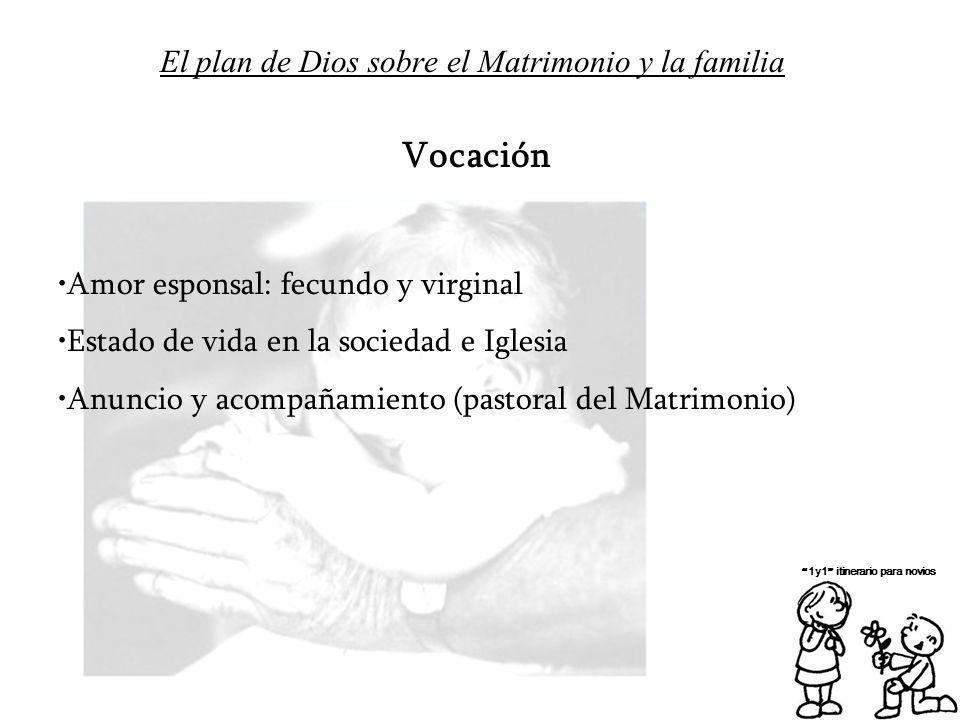 El plan de Dios sobre el Matrimonio y la familia 1y1 itinerario para novios Vocación Amor esponsal: fecundo y virginal Estado de vida en la sociedad e