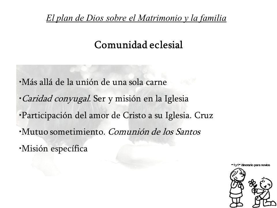 El plan de Dios sobre el Matrimonio y la familia 1y1 itinerario para novios Comunidad eclesial Más allá de la unión de una sola carne Caridad conyugal