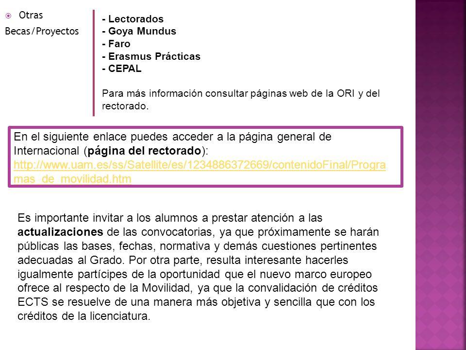 Otras Becas/Proyectos - Lectorados - Goya Mundus - Faro - Erasmus Prácticas - CEPAL Para más información consultar páginas web de la ORI y del rectora