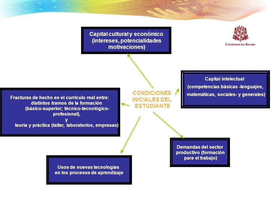 Capital cultural y económico (intereses, potencialidades motivaciones) Fracturas de hecho en el currículo real entre: distintos tramos de la formación