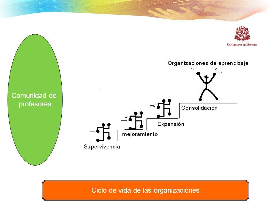 Comunidad de profesores Ciclo de vida de las organizaciones