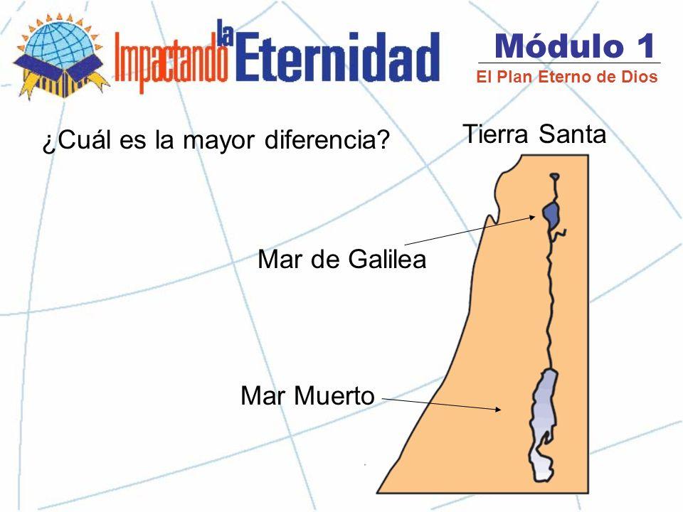 Módulo 1 El Plan Eterno de Dios Tierra Santa Mar de Galilea Mar Muerto ¿Cuál es la mayor diferencia?