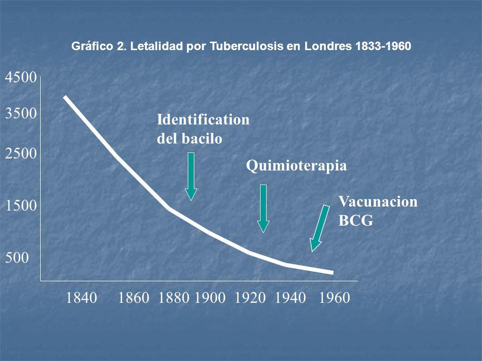 1840186018801900192019401960 500 1500 2500 3500 4500 Identification del bacilo Quimioterapia Vacunacion BCG Gráfico 2. Letalidad por Tuberculosis en L