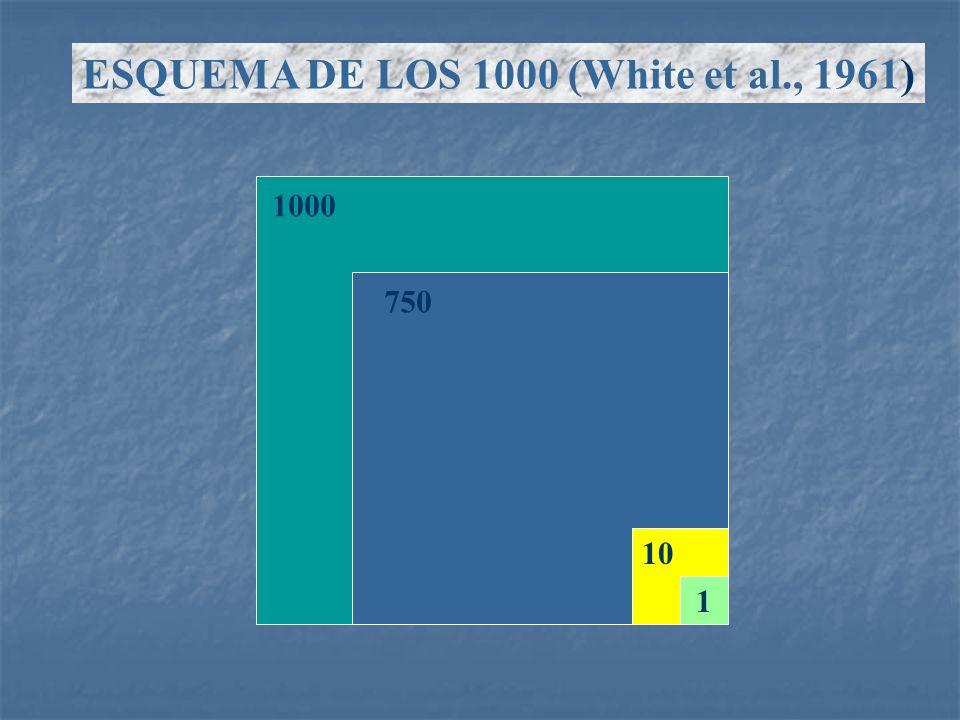 1840186018801900192019401960 500 1500 2500 3500 4500 Identification del bacilo Quimioterapia Vacunacion BCG Gráfico 2.