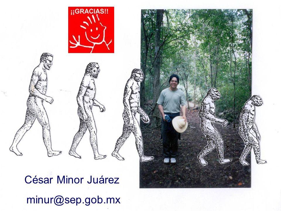 César Minor Juárez minur@sep.gob.mx