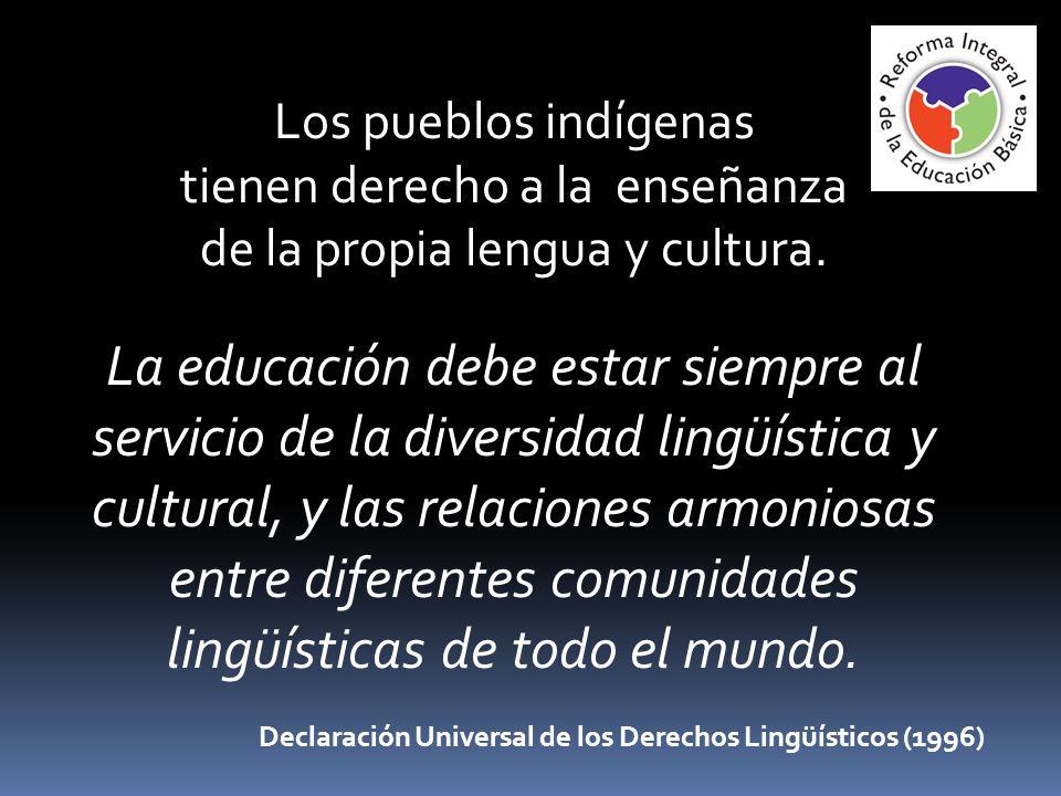 Los pueblos indígenas tienen derecho a la enseñanza de la propia lengua y cultura. La educación debe estar siempre al servicio de la diversidad lingüí