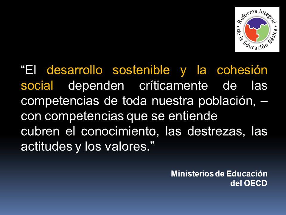 El desarrollo sostenible y la cohesión social dependen críticamente de las competencias de toda nuestra población, – con competencias que se entiende