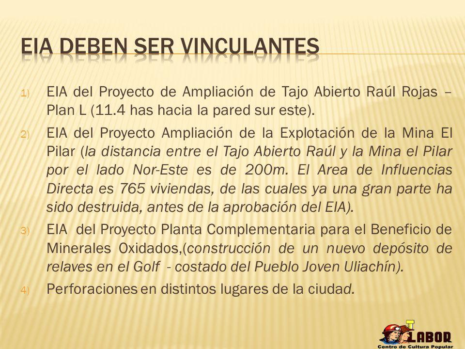 1) EIA del Proyecto de Ampliación de Tajo Abierto Raúl Rojas – Plan L (11.4 has hacia la pared sur este). 2) EIA del Proyecto Ampliación de la Explota