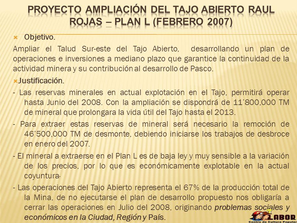 1) En el EIA Plan L, menciona el proyecto Ampliación del Tajo Abierto Raúl Rojas – Plan L, que tiene como objetivo principal garantizar la continuidad de las operaciones de explotación y concentración, con este Proyecto se busca ampliar la vida útil de la mina en 4 años aproximadamente.