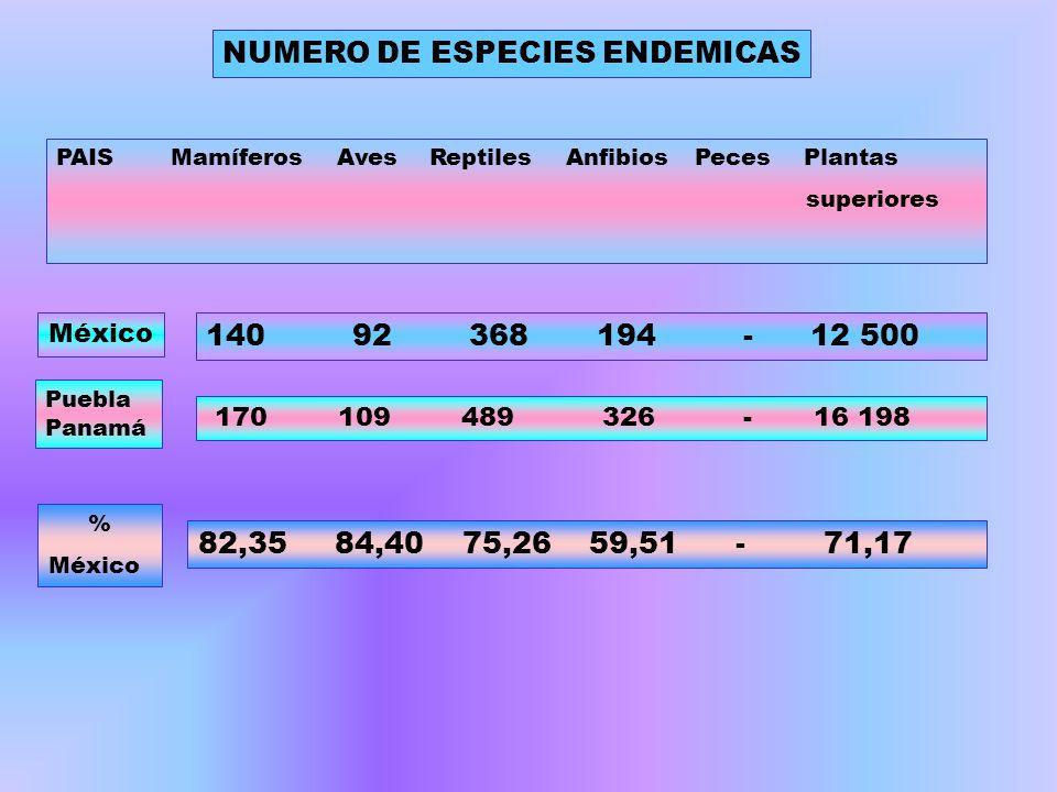 NUMERO DE ESPECIES ENDEMICAS PAIS Mamíferos Aves Reptiles Anfibios Peces Plantas superiores 140 92 368 194 - 12 500 Puebla Panamá 170 109 489 326 - 16